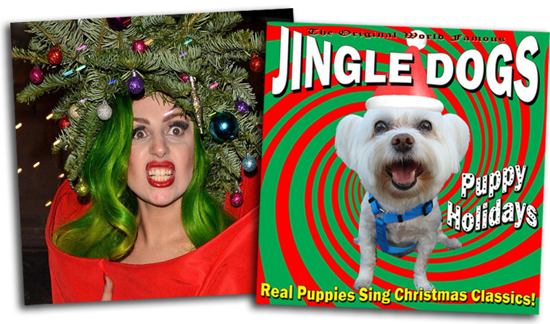 Lady Gaga vs Jingle Dogs